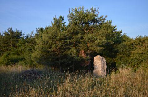 Géobiologie roche